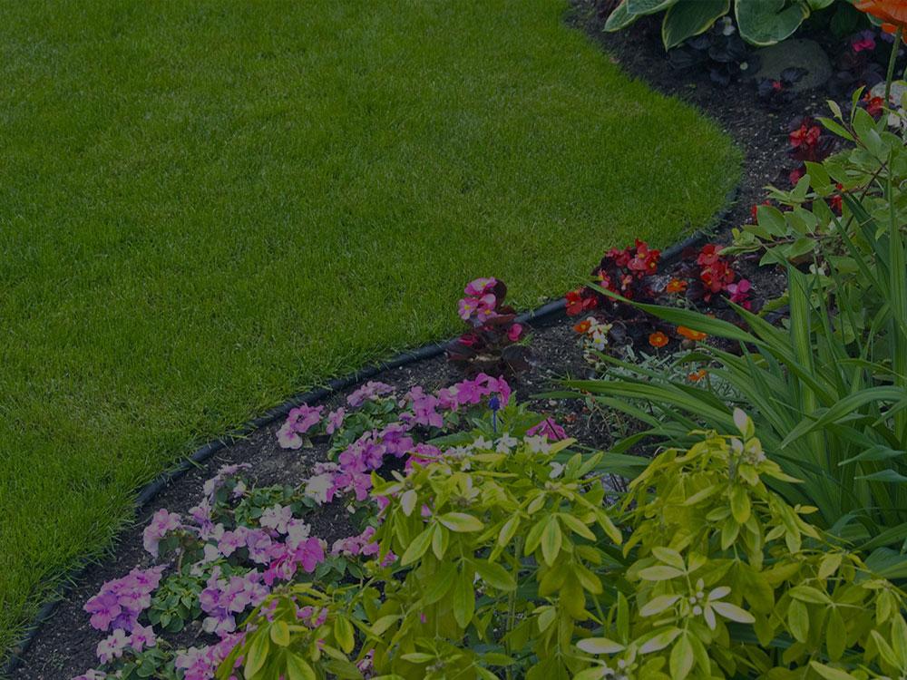 Homosassa Garden Design